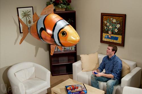 خرید اینترنتی ماهی پرنده کنترلی
